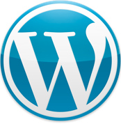 Website speed optimization - wordpress